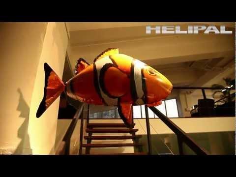 HeliPal.com - Air Fish Flying Shark & Flying Clounfish