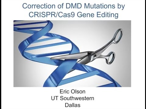 [Webinar] A Closer Look at the Potential of CRISPR/Cas9 in Duchenne - December 2016
