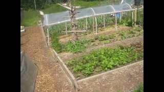 Productive Vegetable Garden /  Salt Spring Island,Canada