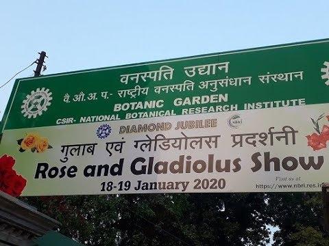 Rose and Gladiolus Flower Show 2020 at Botanic Garden,Lucknow|CSIR|NBRI|Yummy Foodpath