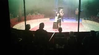Circus bossle in heelsum 2019