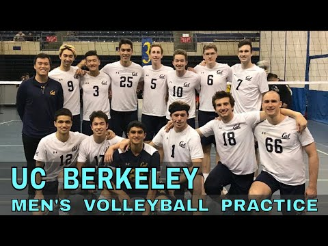 UC Berkeley Men's Volleyball Team Practice Vlog (Coach Donny