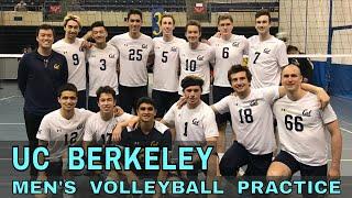 UC Berkeley Men's Volleyball Team Practice Vlog (Coach Donny)