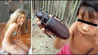 Bu Böceğin Şeyini Yiyenlere Bi Haller Oluyor. Yok Böyle Böcek !