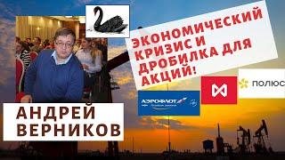 Андрей Верников - Экономический кризис и дробилка для акций!