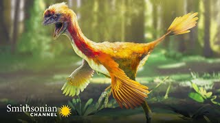 Prehistoric Dinosaur Bird Fossils Found in China Are Amazingly Detailed | Smithsonian Channel