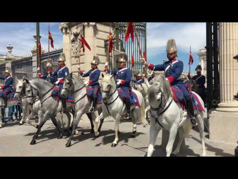 Angry Horse at Changing of the Guard Ceremony