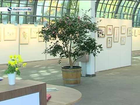 Botanische Malerei im Palmengarten Frankfurt  YouTube
