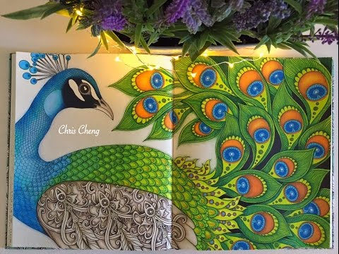 Dagdrömmar Coloring Book | The Peacock | Coloring With Colored Pencils