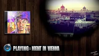 DJ Mitsu The Beats - Night In Vienna