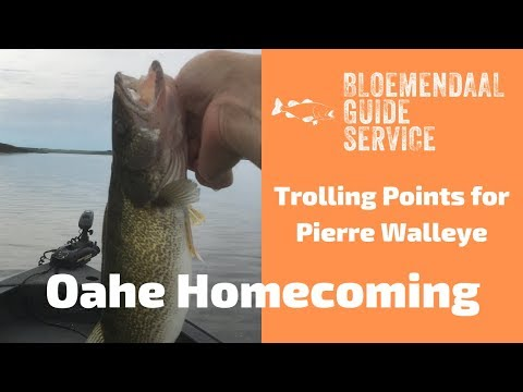 Oahe Homecoming  - Trolling Points For Pierre Walleye