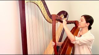 Overview of the Harp, Harp Maintenance and Repair #1
