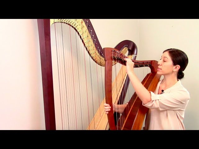 Harp Maintenance and Repair