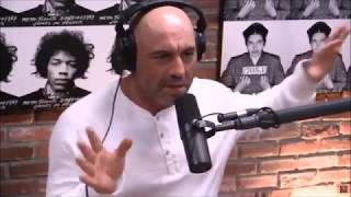 Joe Rogan on Vegans vs Meat Eaters