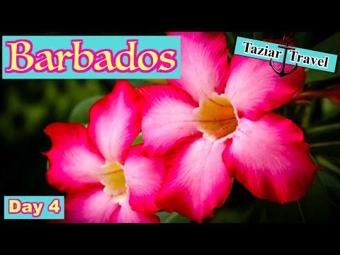 Barbados Travel Vlog Day 4 - 2018