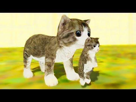Видео Симулятор котика онлайн