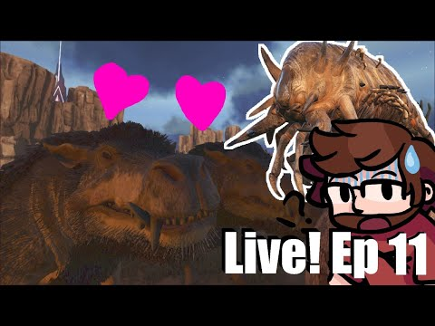 Daeodon Breeding Deathworms Scorched Earth Ark Survival Evolved Ep 11 What stats do you think are best going for on the new heal pig? ruplayers