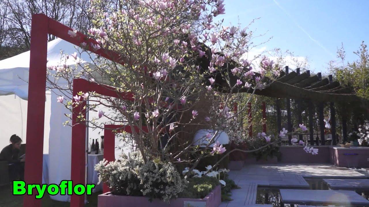 pergola en mousse v g tale pierre berdoulat jardin en