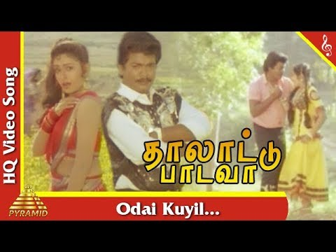 Odai Kuyil Video Song |Thalattu Padava Tamil Movie Songs | Parthiban | Rupini | Pyramid Music