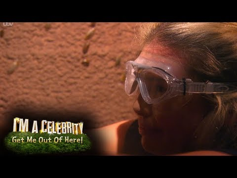 FIRST LOOK: Toff And Amir Khan Take On The Bushtucker Trial! | I'm A Celebrity...Get Me Out Of Here!