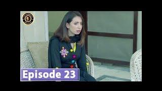 Zard Zamano Ka Sawera Episode 23 - Top Pakistani Drama