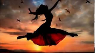 dj-sk-sushi-king-feat-nonkuh---fly-away-original-mix