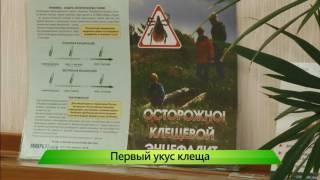 """Первые клещи. 06.04.2017. ИК """"Город"""""""