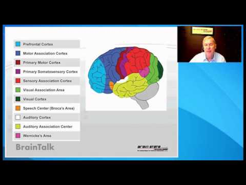Cancer and the Brain, How Brainwave Optimization helped me to ...