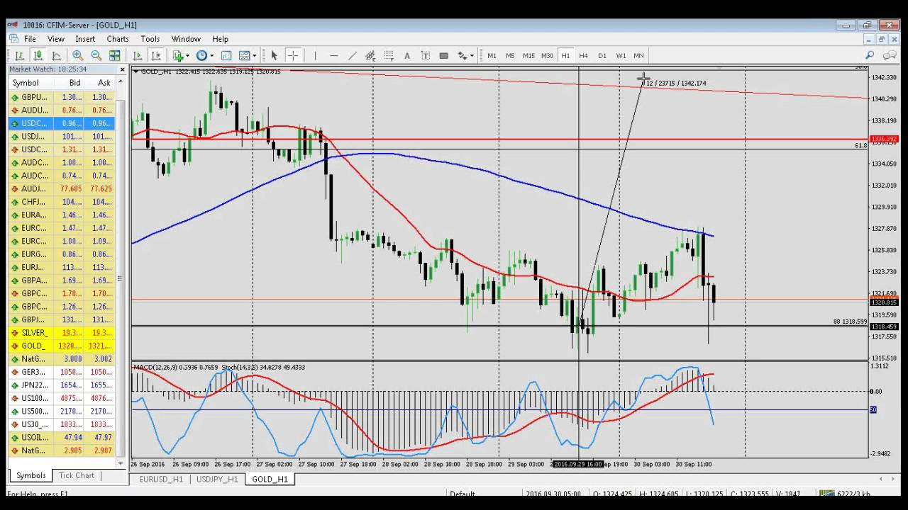 Forex predicting market