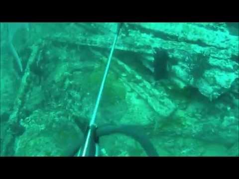 Cannon Wreck off South Carolina