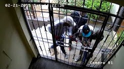 Super Strength Security Gate - CCTV Footage