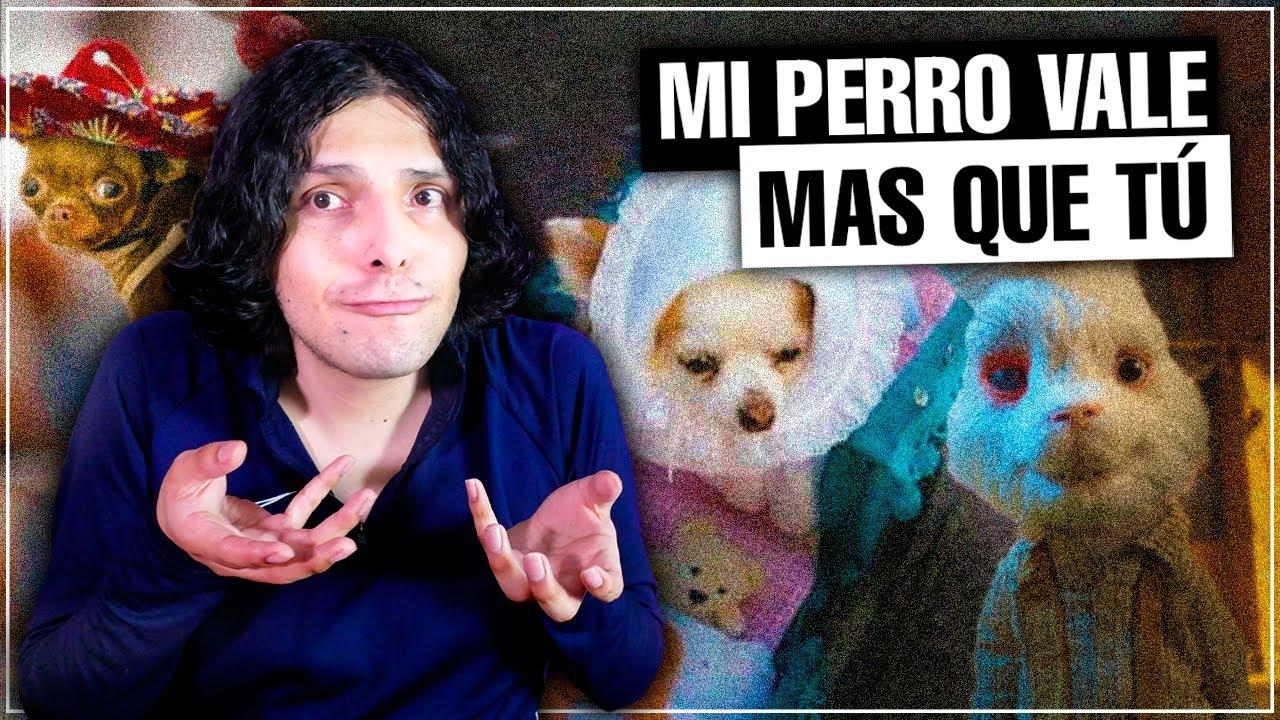 Los ANIMALISTAS XD