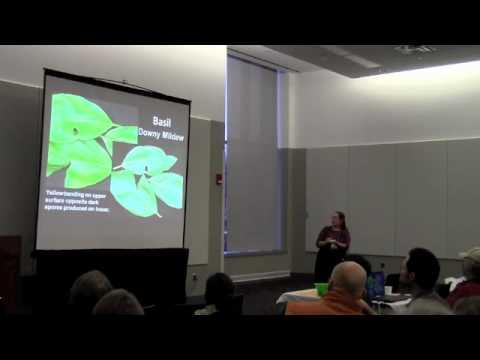 diseases of vegetable crops pdf