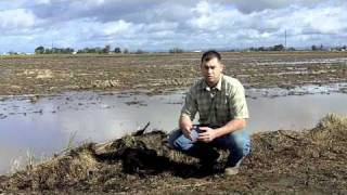 Preparing for the 2011 California rice season