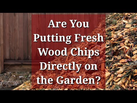 Fresh Wood Chips Directly on the Garden