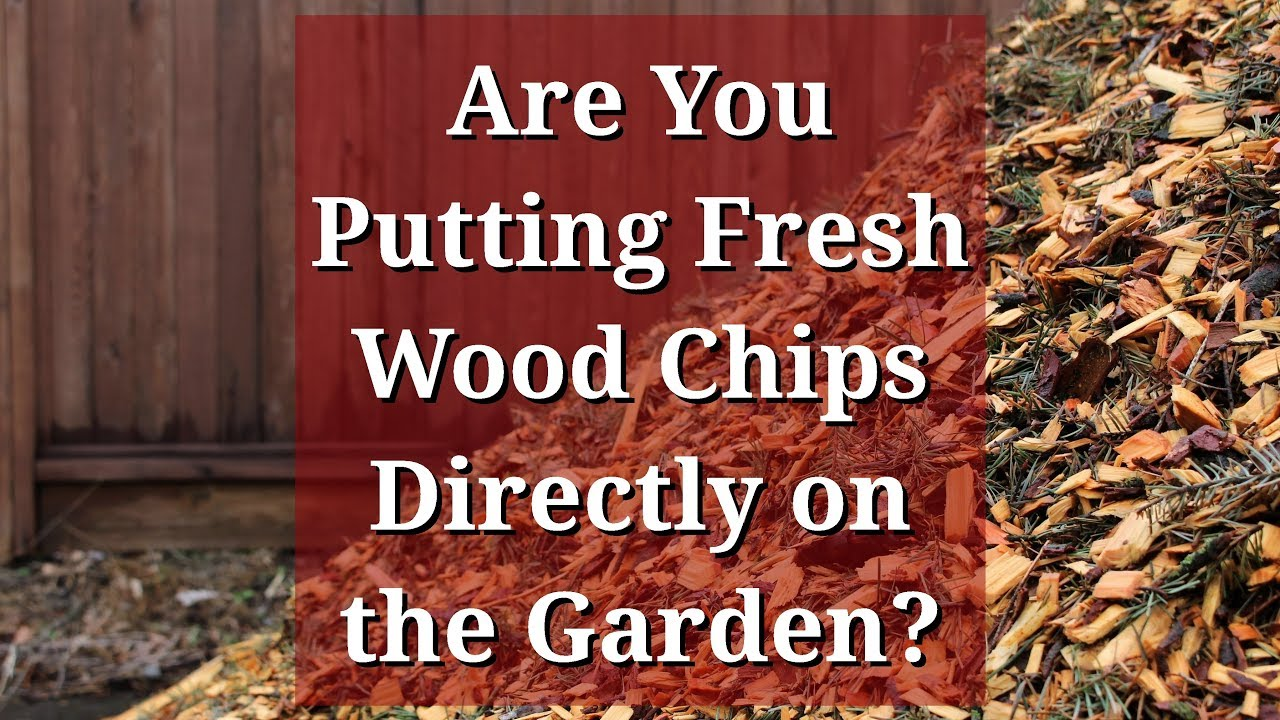 Fresh Wood Chips Directly On The Garden Youtube