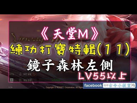 《天堂M》打寶練功特輯(11) 鏡子森林左側 – LV55以上 @ 古今小教室 :: 痞客邦