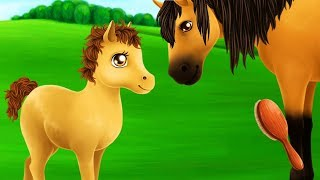 Pet Ponny Care Games - Play Fun Take Care Of The Adorable Horses - Gameplay Android Video