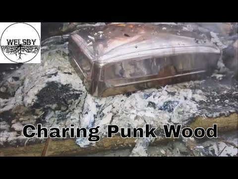 Identifying and Charing Punk Wood