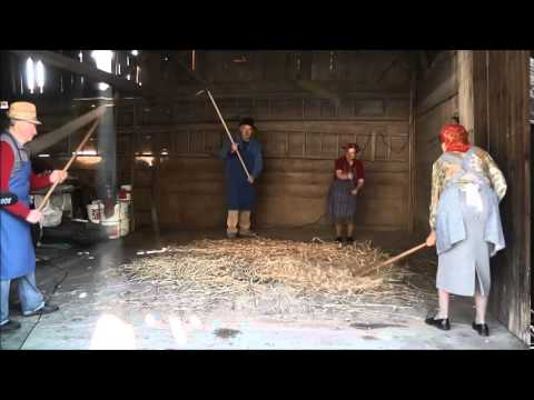 Threshing With Hand Flails Two Pairs Youtube