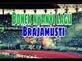 Respect Bonek mania nyanyi lagu psim Jogja Brajamusti