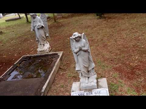 meraba makam Soe Hok Gie diantara makam terendam air dan pohon tua lapuk yang nyaris mati...