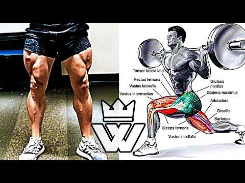 Best Exercises for Legs | Leg workout
