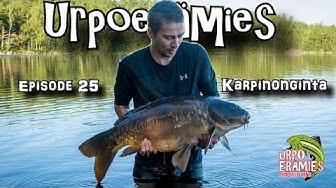 Karpinonginta   Carp Fishing in Finland
