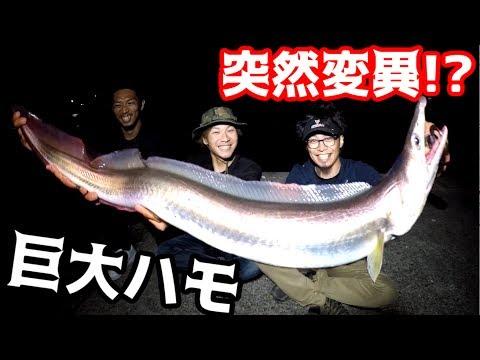 高級魚を狙いにいったら怪物級の魚が釣れた!!