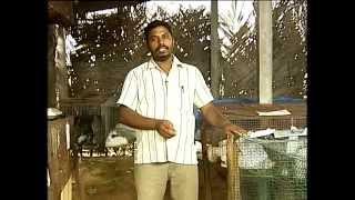 Video Pon Vilaiyum Bhoomi 15/07/2014 Part-1 download MP3, 3GP, MP4, WEBM, AVI, FLV Agustus 2018