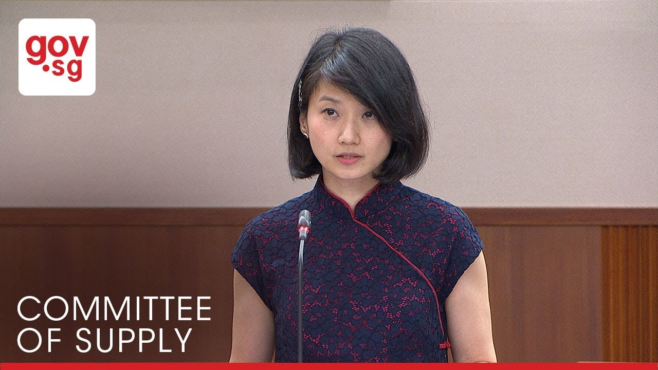 Mp Sun Xueling On The Growth Of Asia S Economy Youtube