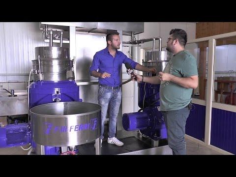 A1 Report - Made In Albania - Fabrika E Vajit Të Ullirit Musai Olive Oil Në Novoselë
