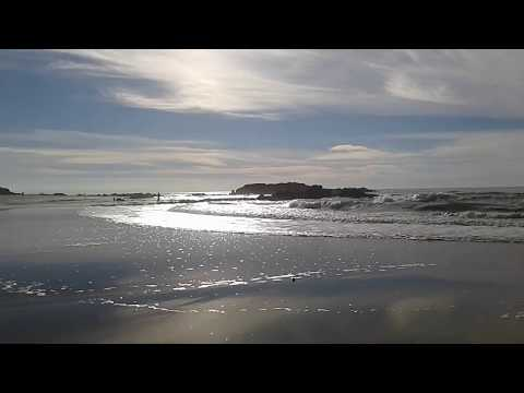 *Sparkling Pacific Ocean at Pescadero Beach in California* The Natural World at My Mountain Home