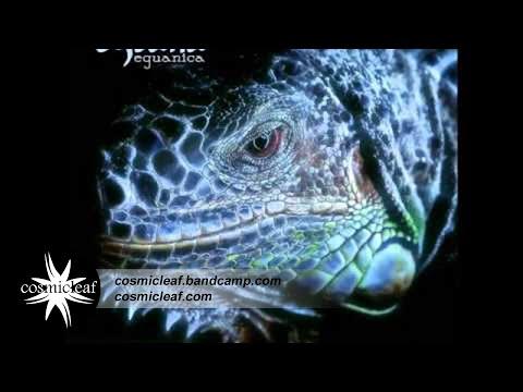 Eguana - Desires Of The People  // Cosmicleaf.com